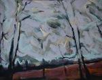 Poplar catkins