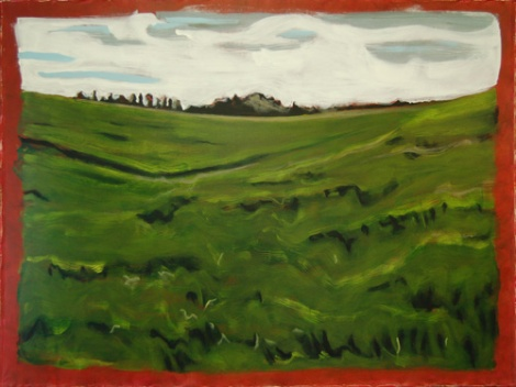 hay fieldsm