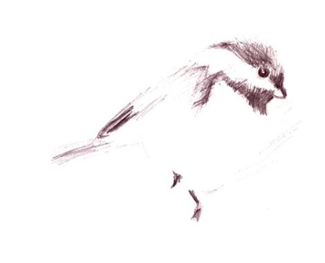 drawing1 april 4