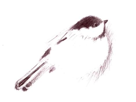drawing2 april 4