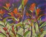 indian paintbrushes on purple