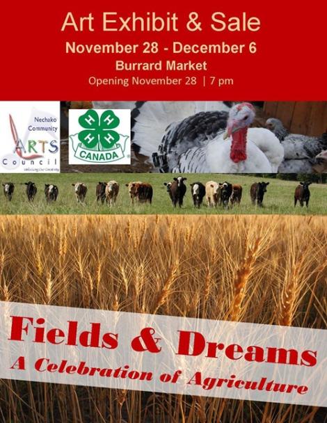 fields & dreams sm