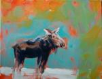 Moose 8