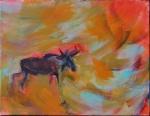 Moose 13