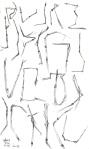straw-script-1sm
