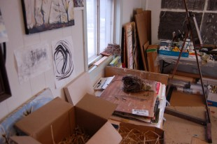 hay and nests in studio