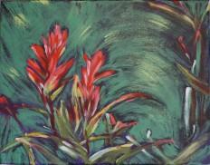 11x14 Indian paintbrushes