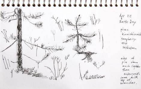 2020 apr 22 drawing sm